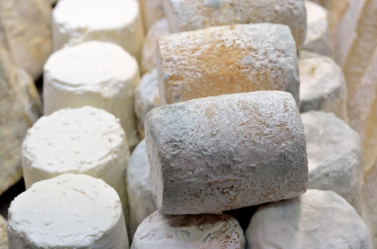 History of Goat Cheese Making