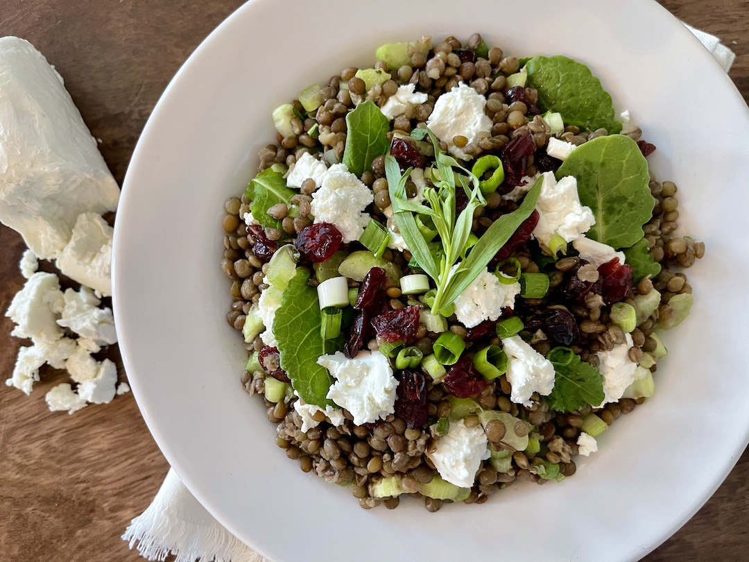 French Lentil Salad closeup sm